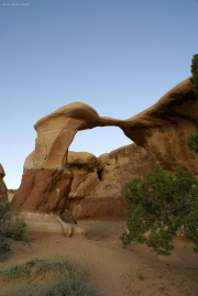 Metate Arch, Devils Garden, Canyons of the Escalante, UT