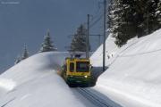 Wengernalpbahn WAB