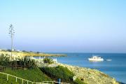 lucwulli_Cyprus_2001_012