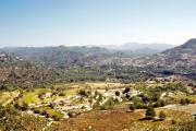 lucwulli_Cyprus_2001_020
