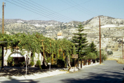 lucwulli_Cyprus_2001_022