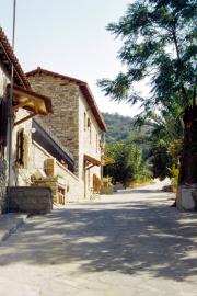 lucwulli_Cyprus_2001_023